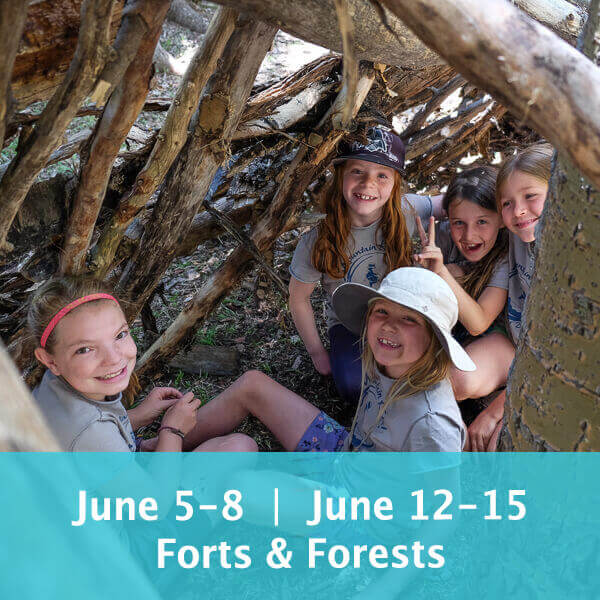 June 5-8 & June 12-15 Forts & Forests with Wilderness Skills